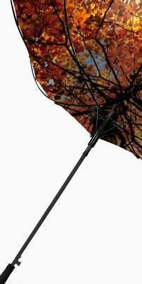 paraguas personalizados antiviento
