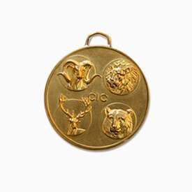 medalla institucional en bronce