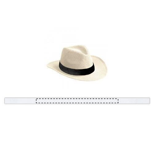 Sombrero Habana 1